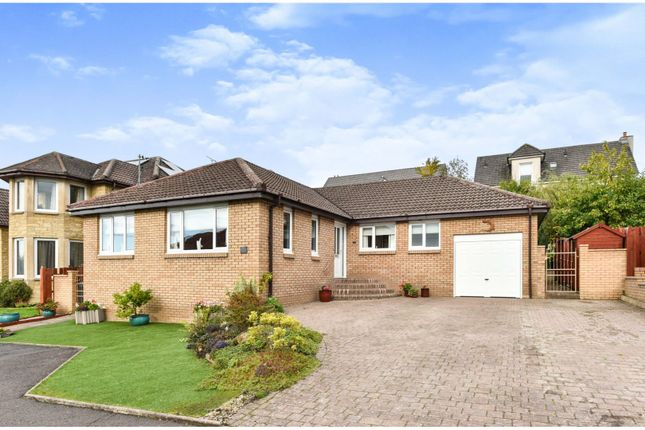 Thumbnail Detached bungalow for sale in Morris Crescent, Motherwell
