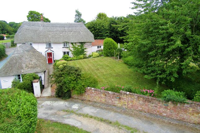 Thumbnail Cottage for sale in Whimple, Exeter