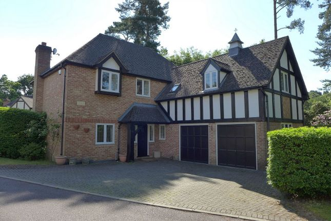 Thumbnail Detached house to rent in The Ridings, Frimley, Camberley