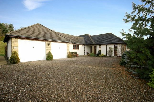 Thumbnail Detached bungalow for sale in Glenrosa, 29, Comerton Place, Drumoig, By Leuchars, Fife