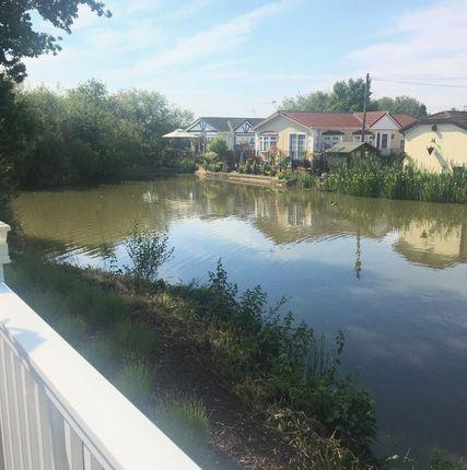 Photo 5 of Lake View Caravan Site, Crouch Lane, Winkfield, Windsor SL4