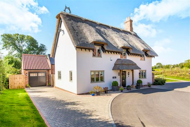 Thumbnail Detached house for sale in The Green, Brington, Huntingdon
