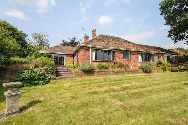 Thumbnail Detached bungalow for sale in Beechfield Lane, Frilsham