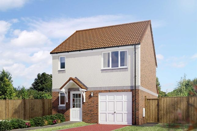 "Thumbnail 3 bedroom detached house for sale in ""The Fortrose"" at Hawkiesfauld Way, Dunfermline"