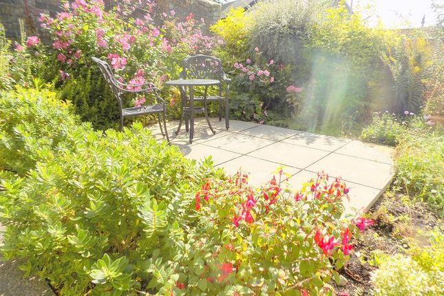 Rear  Garden of Rhyddings Park Road, Uplands, Swansea SA2