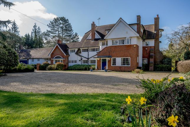 Thumbnail Detached house for sale in New Road, Harmer Green, Welwyn