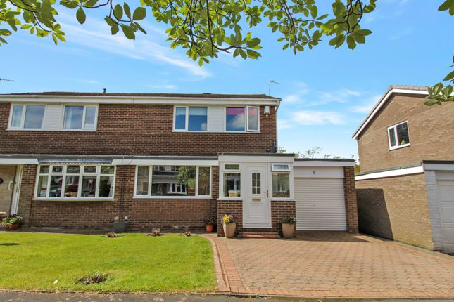 3 bed semi-detached house for sale in Lime Grove, Prudhoe NE42