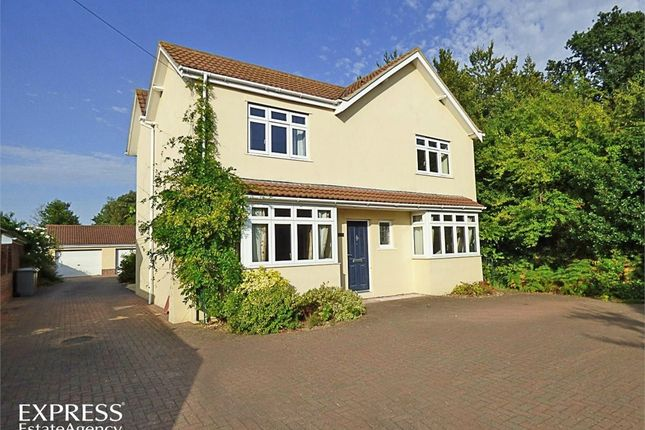 Thumbnail Detached house for sale in Mousehold Lane, Norwich, Norfolk