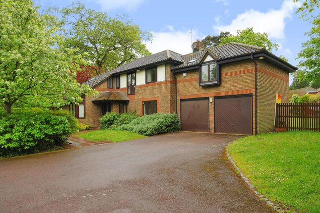 4 bed detached house to rent in The Burlings, Ascot