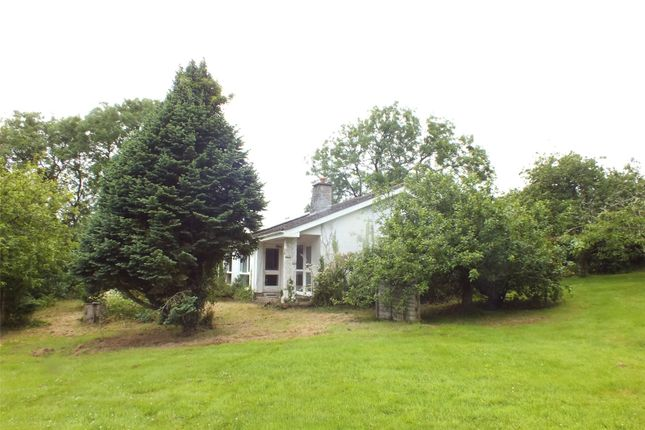 Thumbnail Bungalow for sale in Little Hay, East Williamston, Tenby, Pembrokeshire