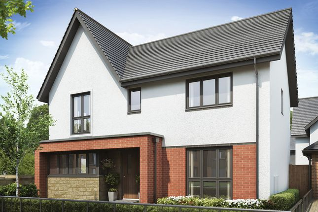 "Thumbnail Property for sale in ""The Cosgrove"" at Welton Lane, Daventry"