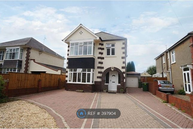Thumbnail Detached house to rent in St. Ambrose Road, Cardiff