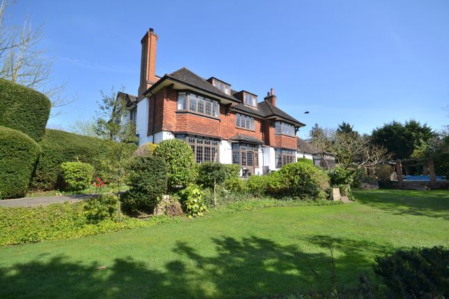 Thumbnail Detached house for sale in Ashwood Road, Woking