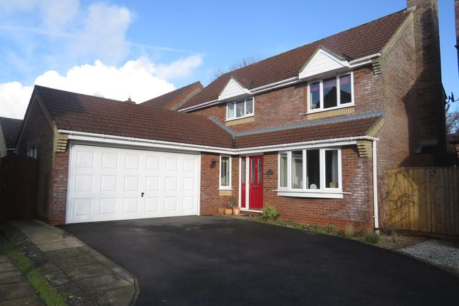 Thumbnail Detached house for sale in Wintergreen, Calne