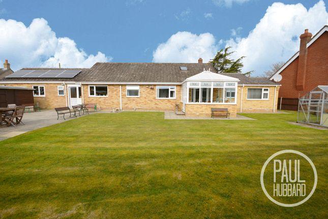 Thumbnail Detached bungalow for sale in Hawkes Lane, Bracon Ash, Norwich