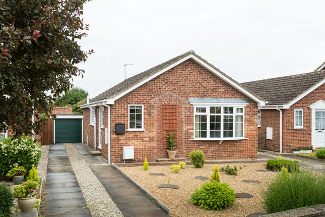 Thumbnail Detached bungalow to rent in The Nurseries, Easingwold, York