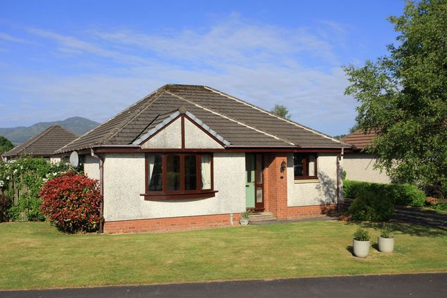 Thumbnail Bungalow for sale in Tay Avenue, Comrie