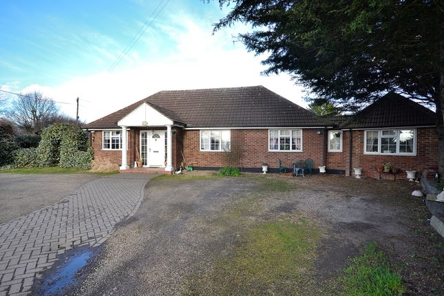 Bungalow for sale in Old House Lane, Roydon, Harlow, Essex