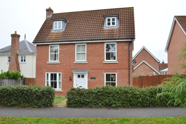 Thumbnail Detached house to rent in Daisy Avenue, Bury St. Edmunds