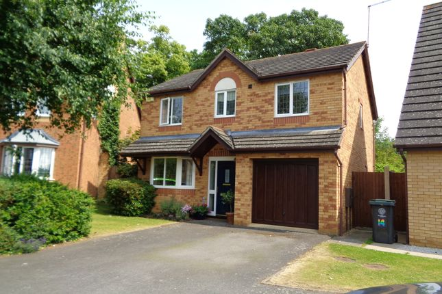 Thumbnail Detached house for sale in Rowell Way, Oundle