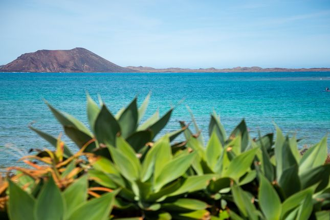 Thumbnail Villa for sale in Grandes Playas, Corralejo, Canary Islands, Spain