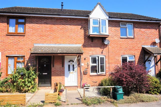 Thumbnail Terraced house for sale in Princeton Mews, Colchester