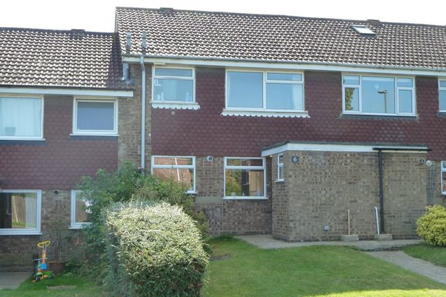Thumbnail Terraced house to rent in Southfleet Road, Farnborough, Orpington