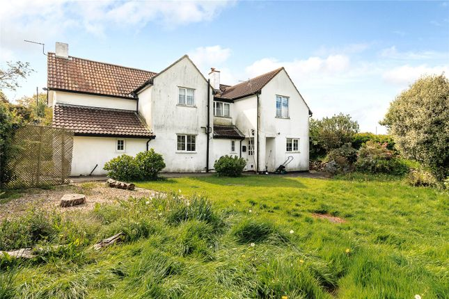 Thumbnail Detached house for sale in Sampford Moor, Wellington, Somerset