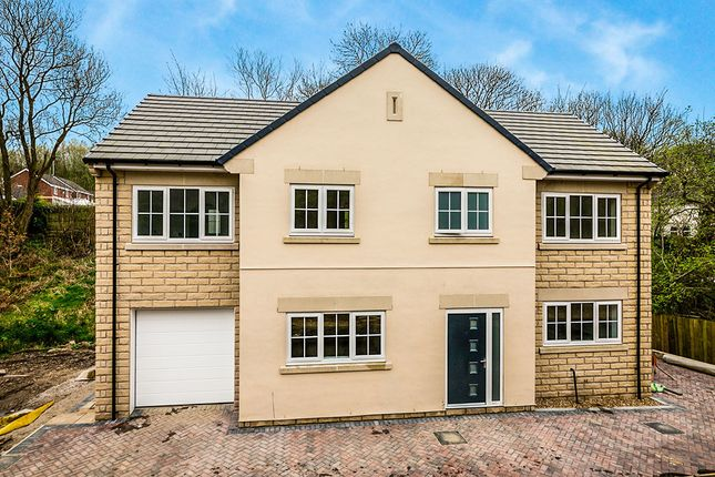 Thumbnail Detached house for sale in Godley Brook Lane, Hyde