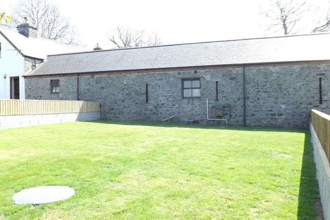 Buzzard Exterior of Templeton, Narberth SA67