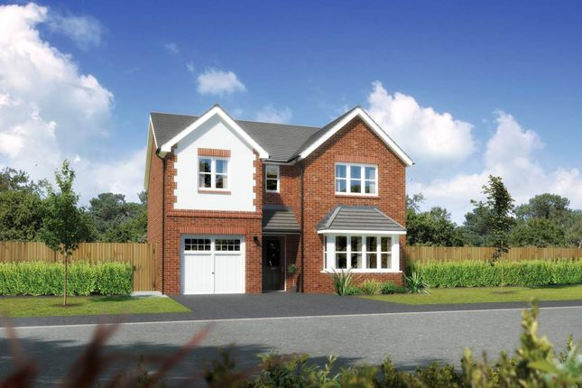 "Thumbnail Detached house for sale in ""Hampsfield"" at Close Lane, Alsager, Stoke-On-Trent"