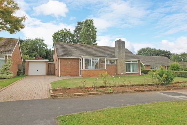 3 bed detached bungalow for sale in Winslade Park Avenue, Clyst St. Mary, Exeter