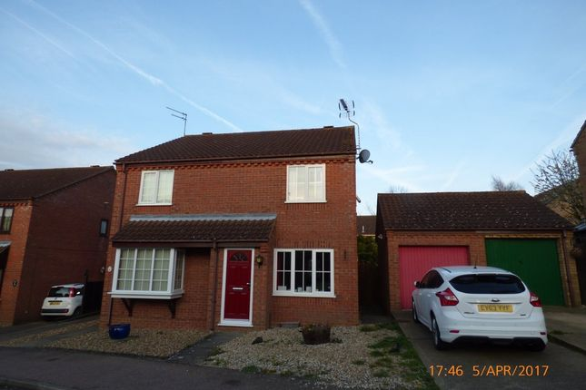 Thumbnail Semi-detached house to rent in Hillcrest Close, Worlingham, Beccles
