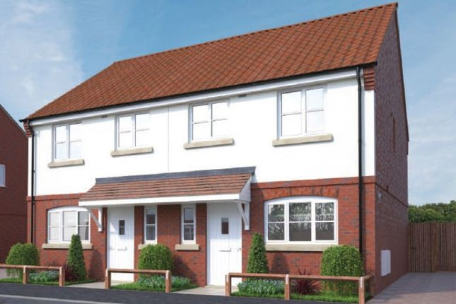 Thumbnail Semi-detached house for sale in The Herring At Weavers Meadow, Great Cornard, Sudbury