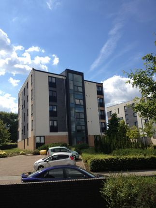Thumbnail Flat to rent in 4/2 Firpark Close, Dennistoun, Glasgow