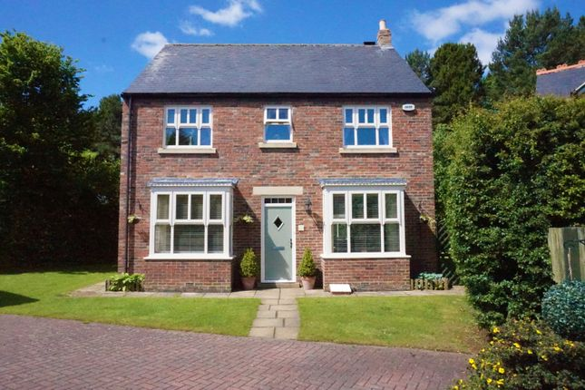 Thumbnail Detached house for sale in Tilery Wood, Wynyard