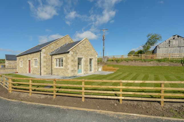Thumbnail Detached house for sale in Scout Hill, Chatton, Alnwick