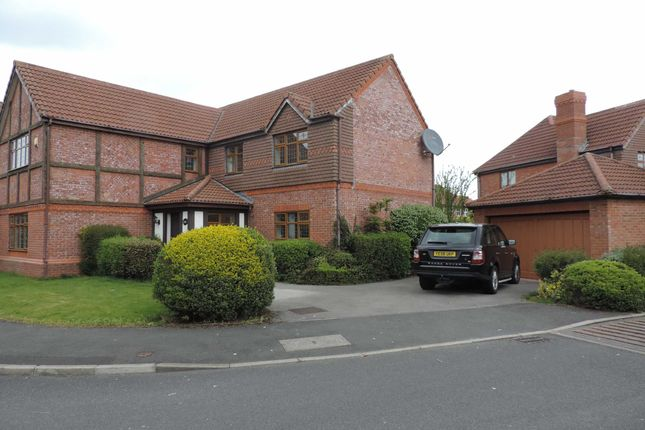 Thumbnail Detached house to rent in Old School Drive, Longton, Preston