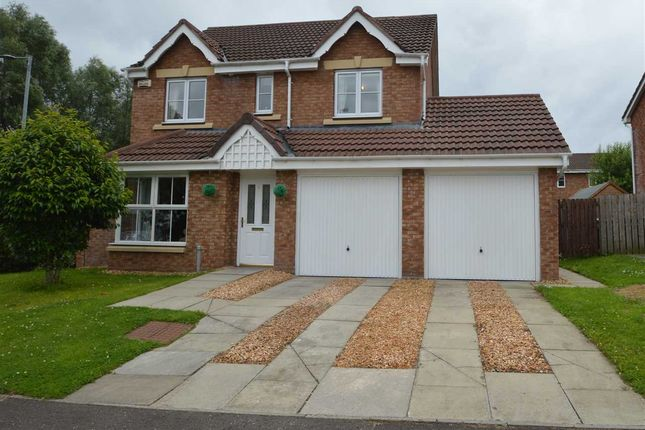 Thumbnail Detached house for sale in Berryhill Crescent, Wishaw