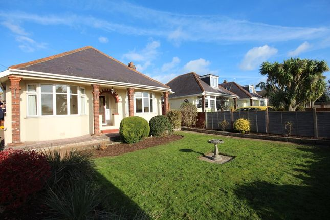 Thumbnail Detached house to rent in Rea Barn Road, Brixham