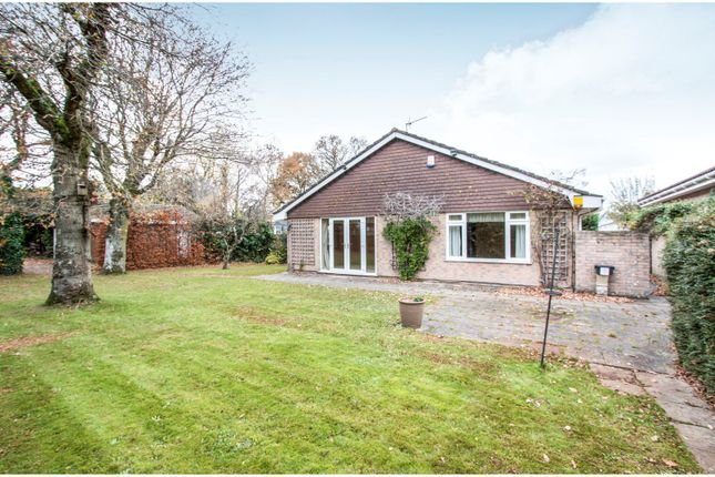 Thumbnail Bungalow to rent in Ringwood Road, St. Leonards, Ringwood