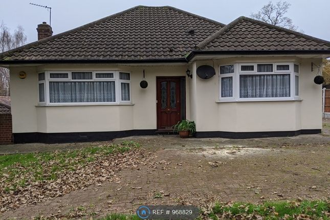 3 bed bungalow to rent in Manor Road, Chigwell IG7