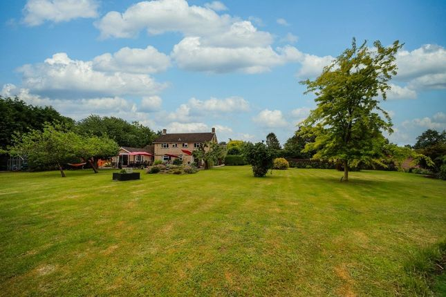 Thumbnail Detached house for sale in Rectory Road, Brome, Eye