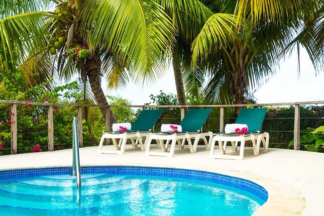 Seaberry Barbados Swimming Pool
