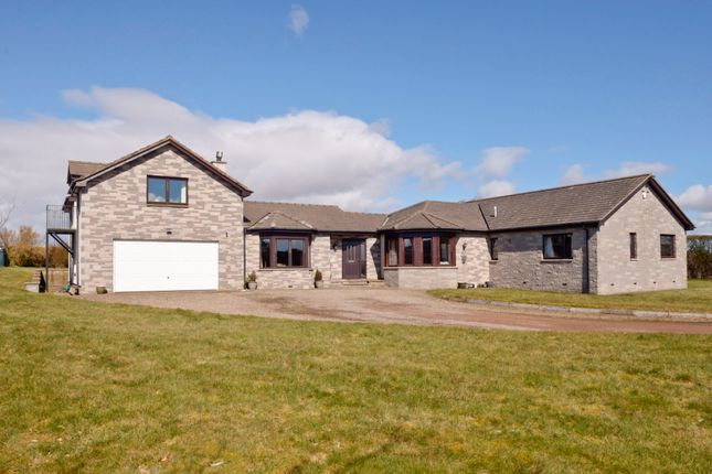 Thumbnail Detached house for sale in Main Street East End, Chirnside