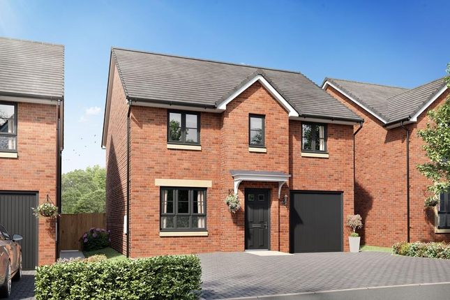 """Thumbnail Detached house for sale in """"Fenton"""" at Holehouse Road, Kilmarnock"""
