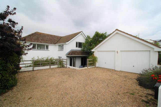 Thumbnail Detached house to rent in Whidborne Avenue, Torquay