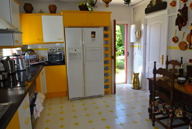 Cocina (3) of Spain, Málaga, Málaga