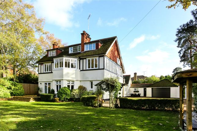 Thumbnail Detached house for sale in Alison Drive, Camberley, Surrey