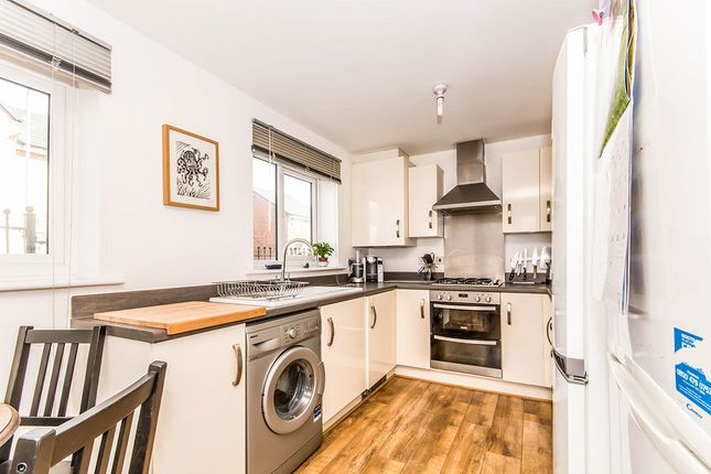 Thumbnail Semi-detached house for sale in Norway Maple Avenue, Manchester